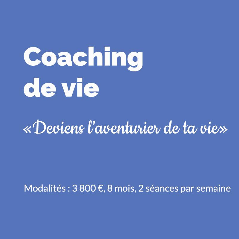 Bruno Bernasconi, Coaching de vie en ligne